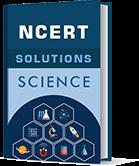 NCERT Textbook Solutions